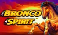 Bronco Spirit Giant Wins