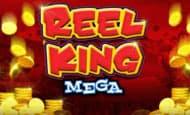 Reel King Mega Giant Wins